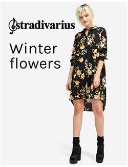 Stradivarius Winter Flowers