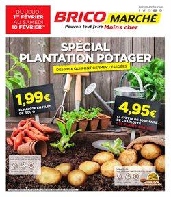 Spécial potager plantation 2018