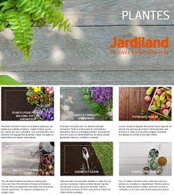 Jardiland Plantes