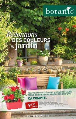 Redonnons des couleurs au jardin