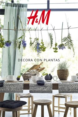 H&M Decorar con plantas