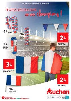 Coupe du monde leaflet ile de France