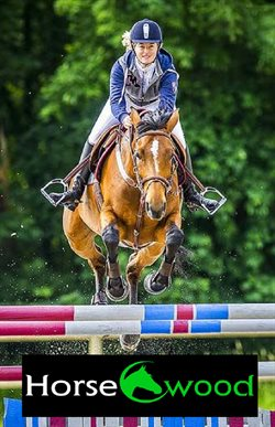 Équipements du cheval
