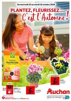 Plantez, fleurissez, c'est l'automne !