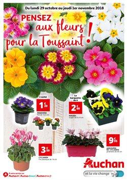 Pensez aux fleurs pour la Toussaint