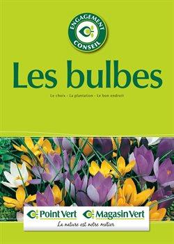 Les bulbes