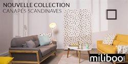 Nouvelle Collection Canapés Scandinaves
