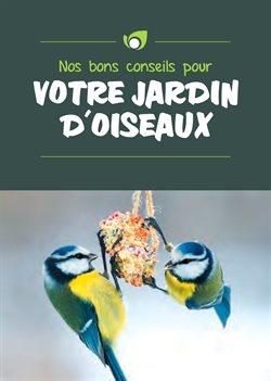 Votre jardin d'oiseaux