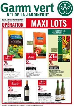 Maxi Lots