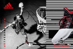 Collection Chaussures de Basket