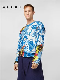 Collection Chemises & T-Shirts / Homme
