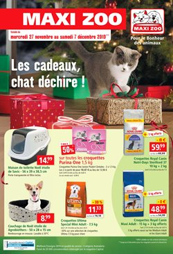 Les cadeaux, chat déchire!