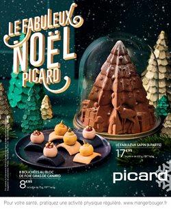 Le Fabuleux Noël Picard