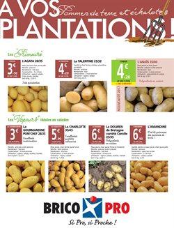 A vos plantations!