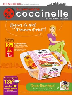 Catalogue Coccinelle