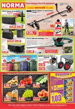 Catalogue Norma