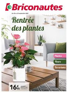 Rentrée des plantes