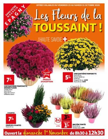 tract chrysanthèmes