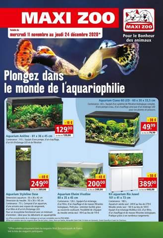 Plongez dans le monde de l'aquariophilie
