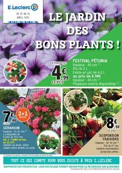 LE JARDIN DES BONS PLANTS !