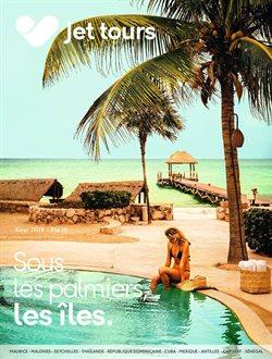 Sous les palmiers, les îles