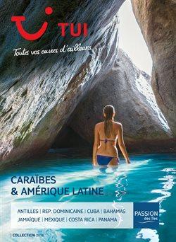 Caraïbes & Amérique Latine