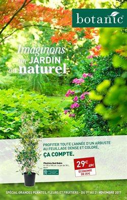 Imaginons un jardin au naturel